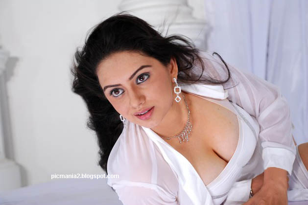 south indian actress hema malini hot cleavage and deep navel