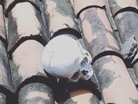Crânio humano é encontrado por moradores em cima de telhado em área central de JP