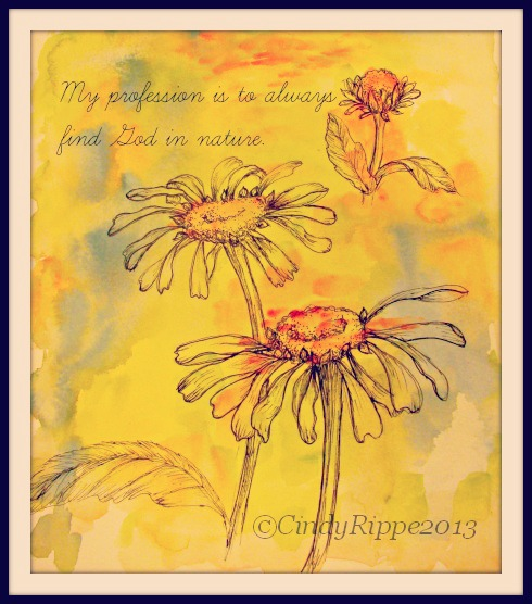 Acrylic Wash, Pen & Ink, Daisies, Henry David Thoreau quote, Art by Cindy Rippe, Florals - Family - Faith