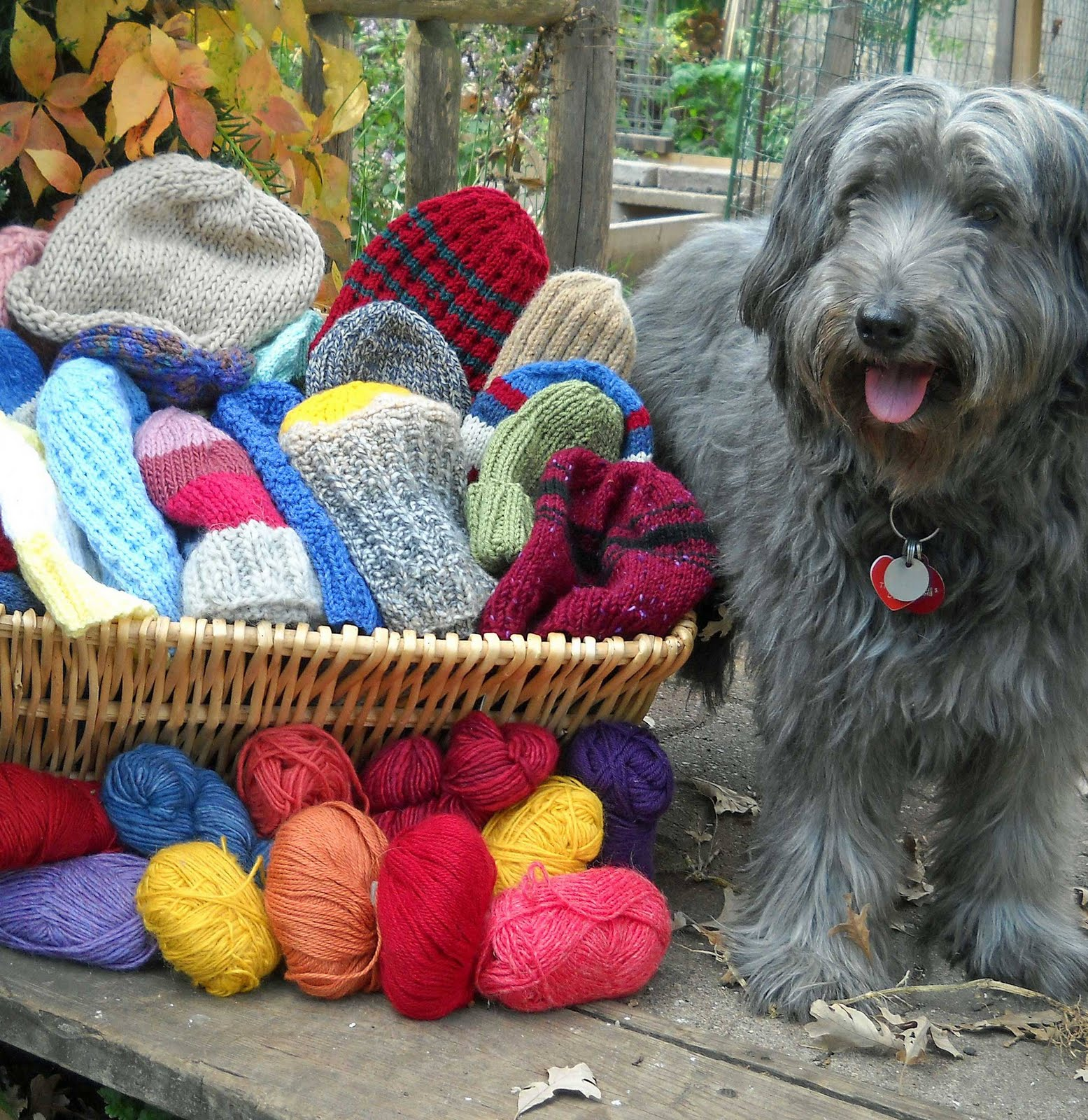 Knitting Scarves For The Homeless : Hats for the homeless knitting giving loving