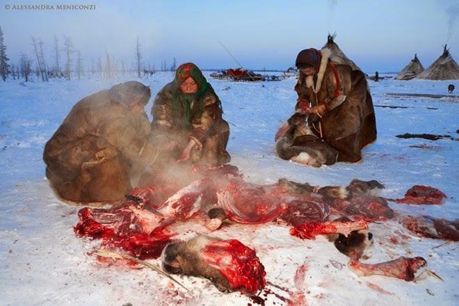 Bộ tộc ăn thịt sống ở Bắc Cực6