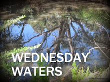 Join Wednesday Waters