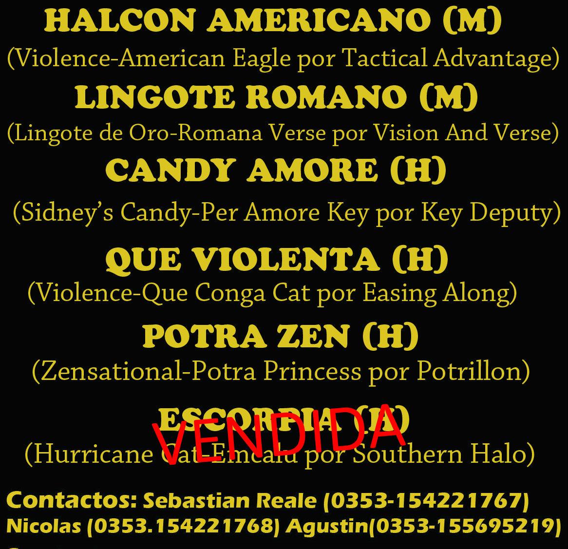 HS EL ARROYO 2 E