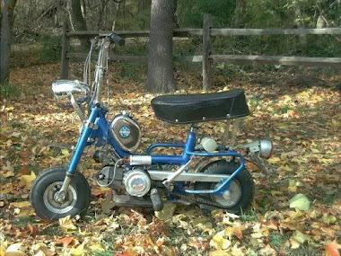 Benelli buzzer my first bike