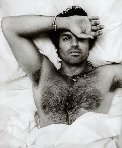 Me encantan los hombres peludos con el torso