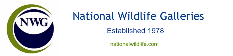National Wildlife Galleries