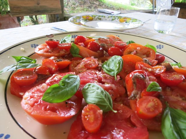 Tomato Salad with Vinegar and Shallots www.ElizabethMinchilliInRome.com