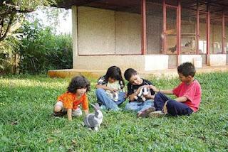 conejos y niños