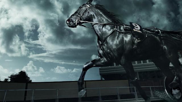 number_9_black_horse_wallpaper_hd