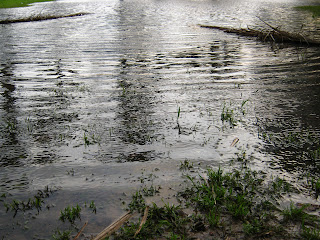 flood park Heavy rain stock photo