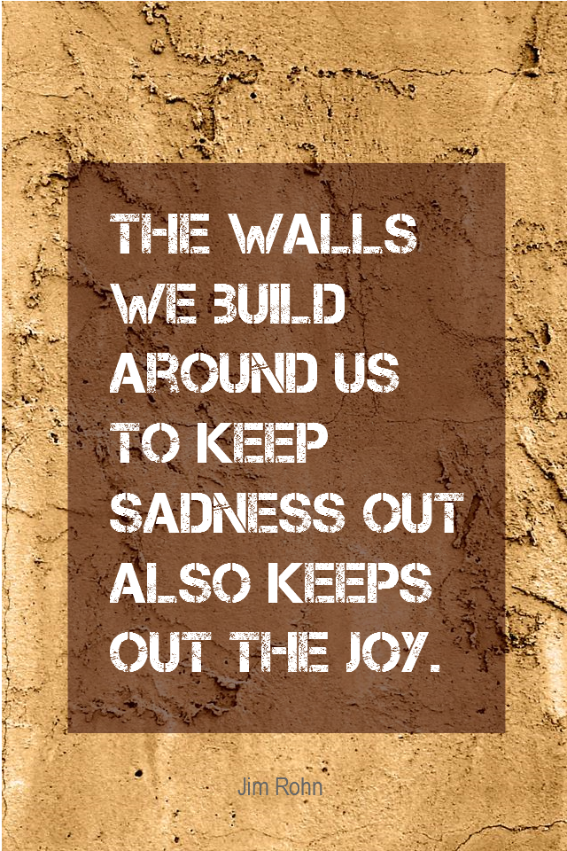 visual quote - image quotation for Happiness - The wall we build around us to keep sadness out also keeps out the joy. - Jim Rohn