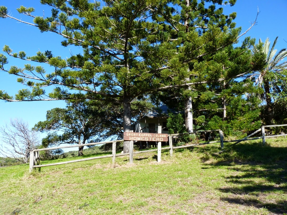 great keppel island how to go