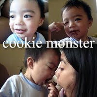 Little Cookie Monster