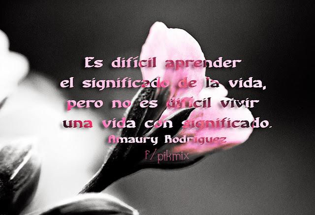 El significado de la vida ● Frases ● Amaury Gutierrez