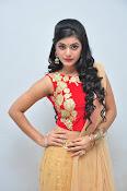 yamini bhaskar latest glam pics-thumbnail-14