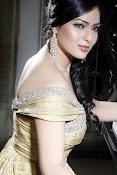 Nikesha Patel latest sizzling portfolio-thumbnail-12