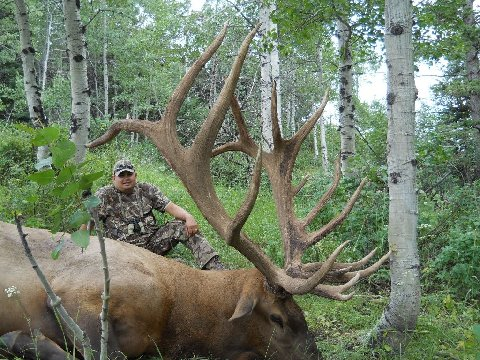 2010 World Record Bull Elk http://hamburgerfries.blogspot.com/2011/12/pending-world-record-bull-elk.html