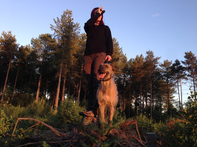 Jennifer Tulip and paddy lurcher dog walking