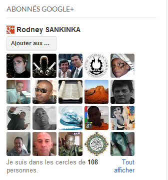Gadget abonnés followers Google+