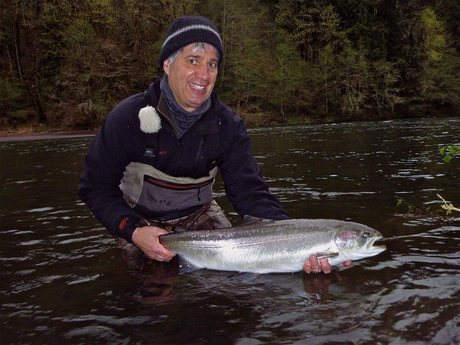 Silvey 39 s flyfishing sandy river spring steelhead photos for Sandy river fishing