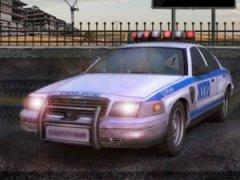 3d Polis Ringi