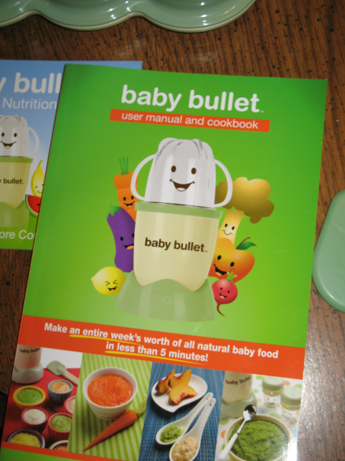 review magic bullet baby bullet central minnesota mom rh centralmnmom com Safety First Walker Instruction Manual baby bullet user manual and cookbook pdf