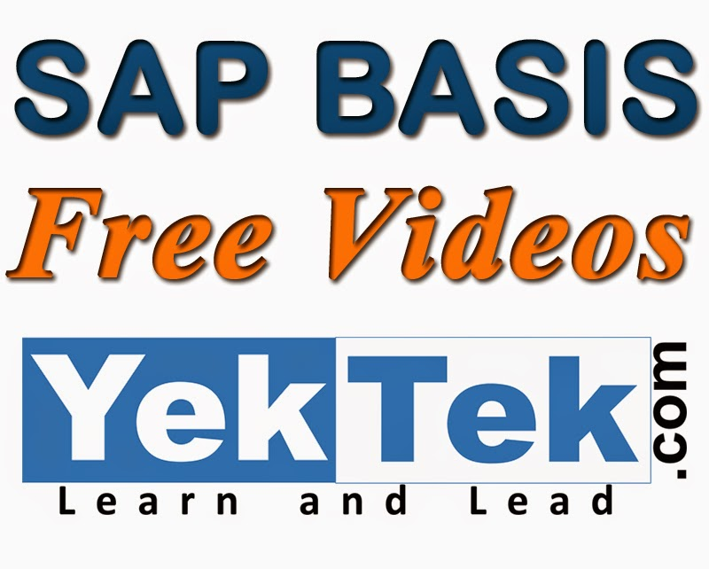SAP BASIS Free Videos
