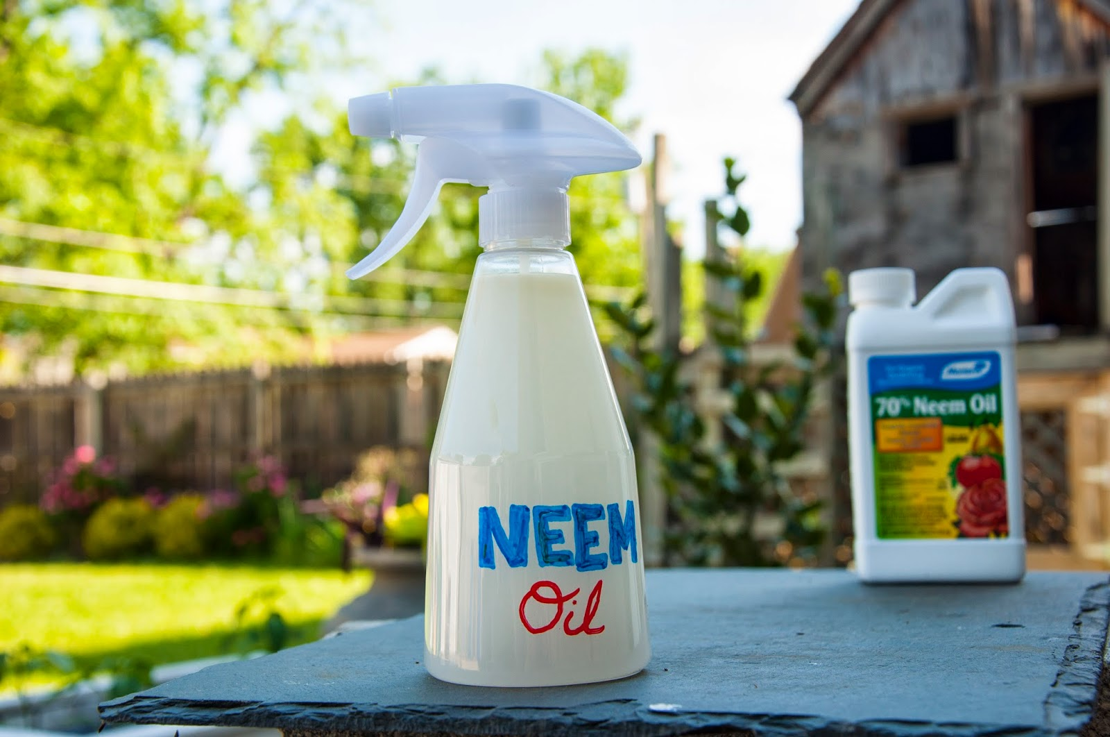 The Green Gardener Neem The Organic Insecticide