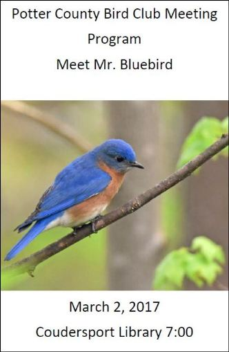 3-2 Potter County Bird Club Meeting