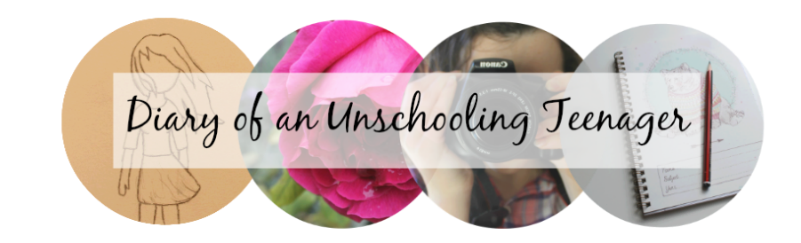 Diary of an Unschooling Teenager