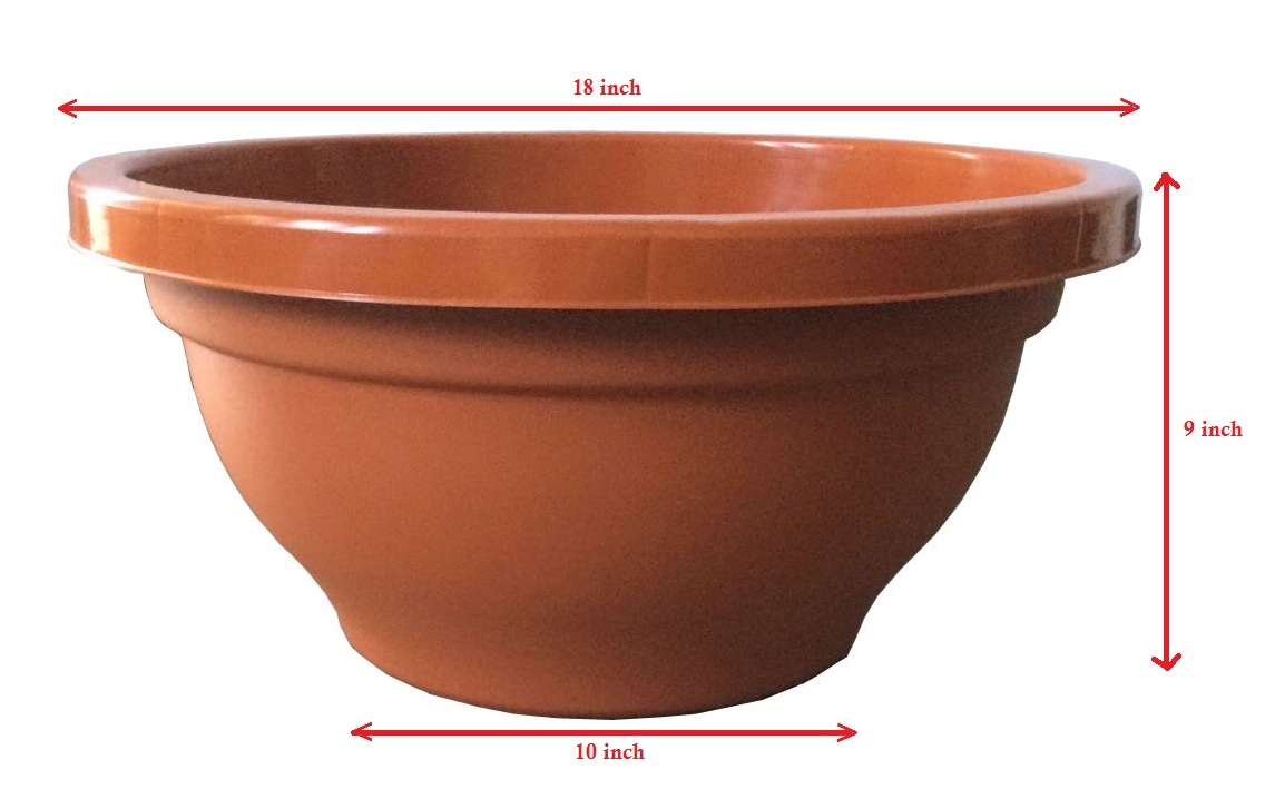 bonsai trees and plants in ahmedabad for sale plastic pots containers. Black Bedroom Furniture Sets. Home Design Ideas