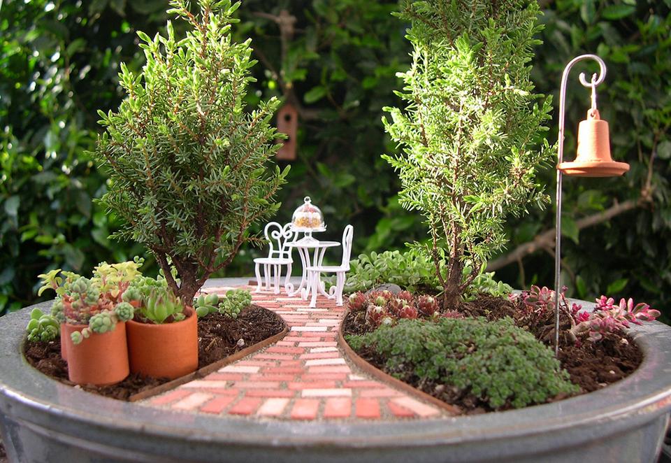mini jardins em vaso:Tu Organizas.: Mini jardins em vasos