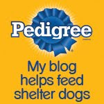 The Pedigree Foundation!