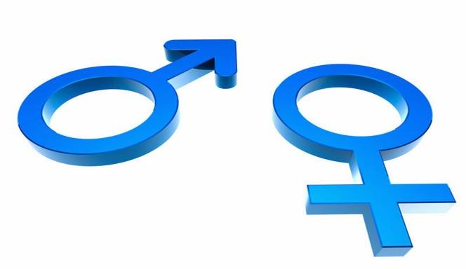 17 Perbedaan Paling Mendasar Antara Pria dan Wanita
