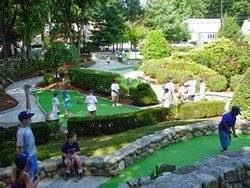 http://www.mcgolfonline.com/mini_golf/index.php