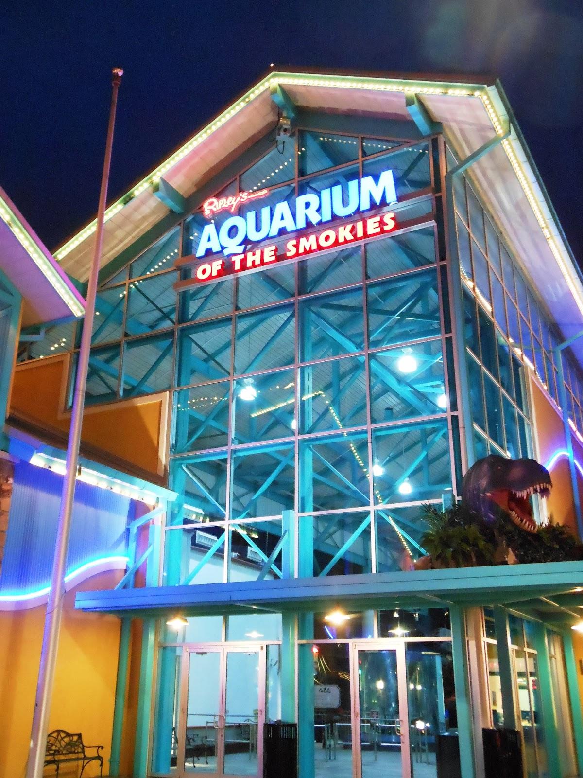 Zoo Tails Ripley S Aquarium Of The Smokies Review