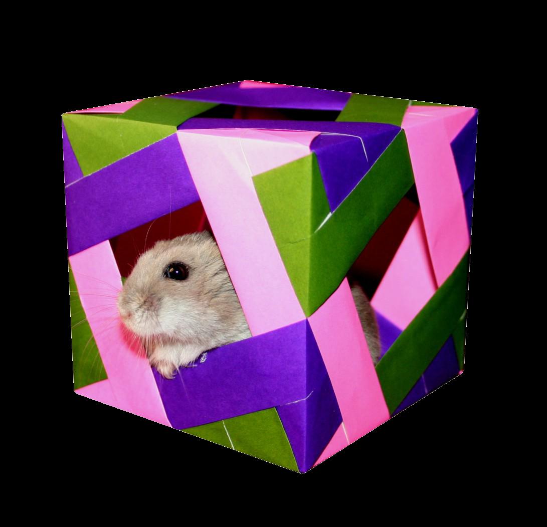 Origami Maniacs Cube 2
