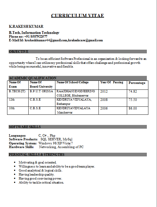itengineerfresherresume - Curriculum Vitae Resume Format Doc