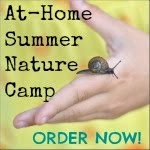 DIY Summer Camp Guide!