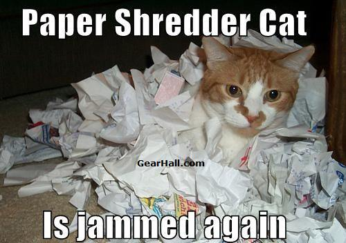 shredder cat jammed