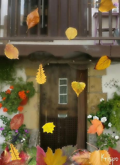 hojas que caen como lluvia ante la puerta de una casa