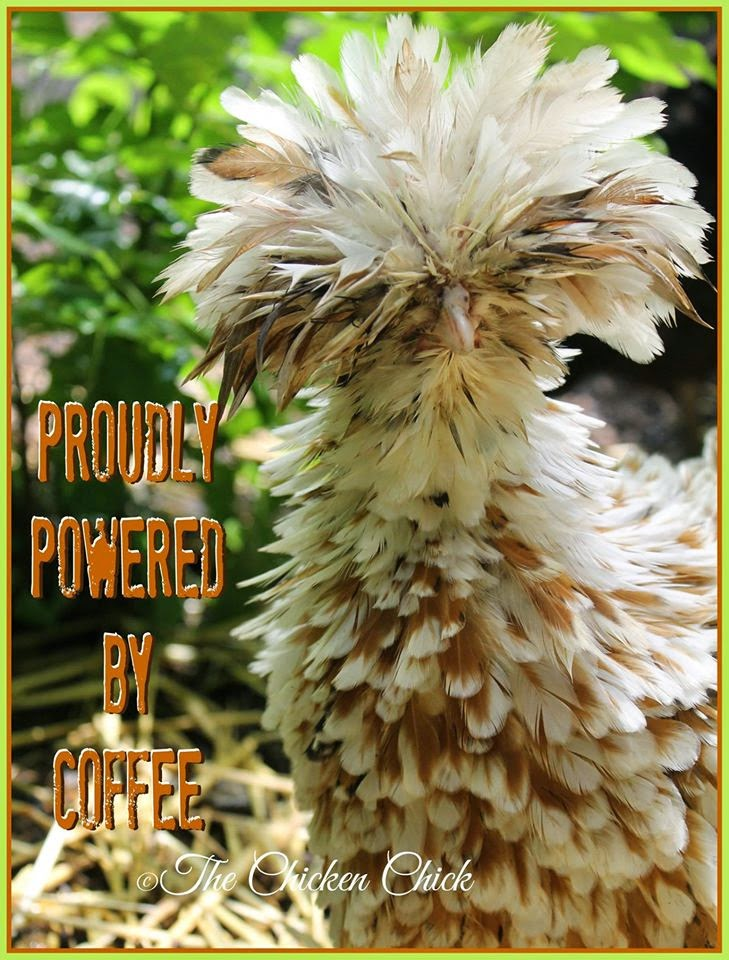 Proudly powered by coffee.