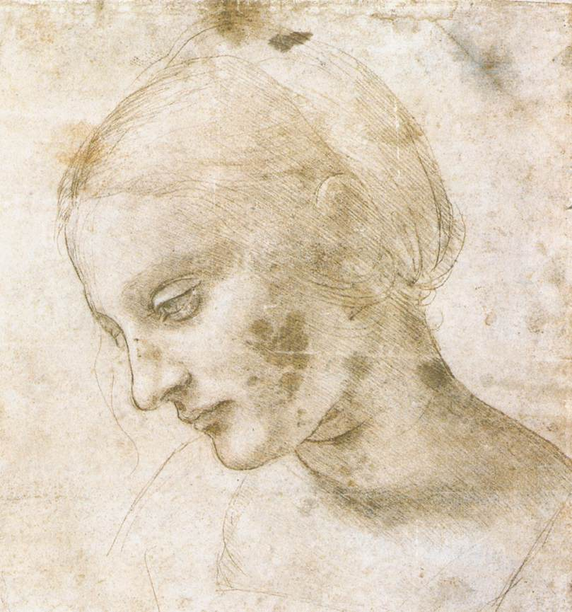 Leonardo Da Vinci Essay Paper