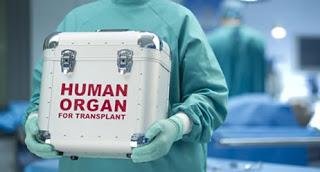 Перелить кровь - значит съесть кровь или пересадить орган