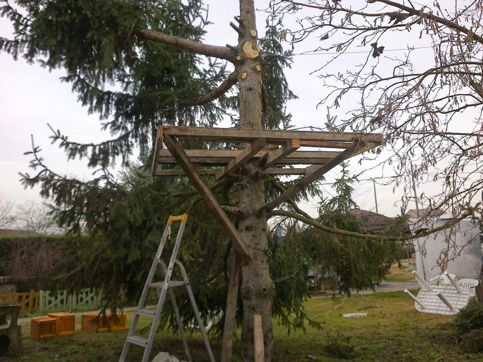 Gli argomenti spaziano casa sull 39 albero inizio - Casa sull albero minecraft ...