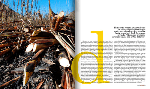 Magazine Layouts (Good and Bad) | Endicott Designs