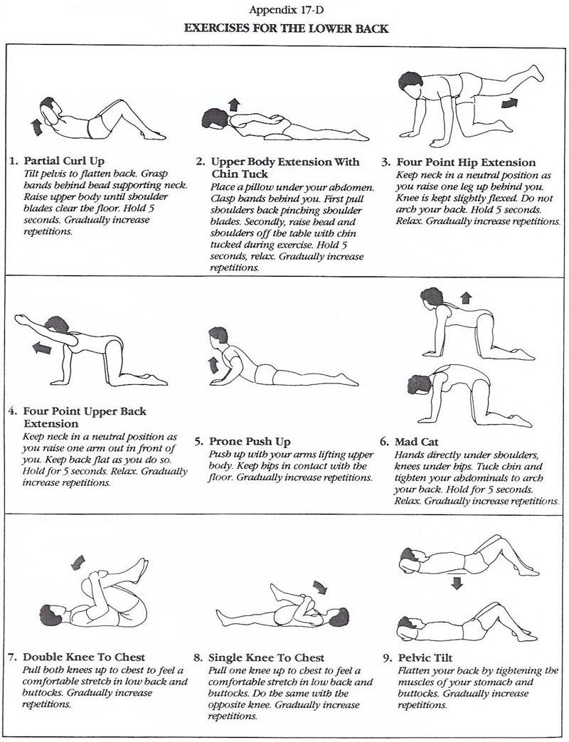 Back Injury Rehabilitation Program