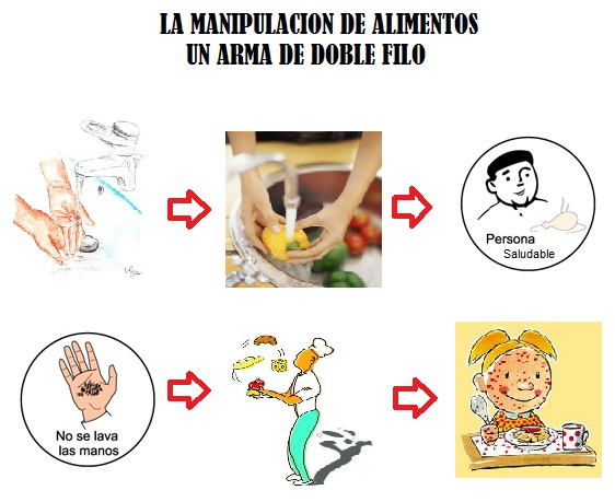 Mis tareas - Higiene alimentaria y manipulacion de alimentos ...