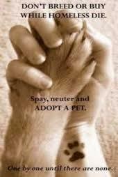 Adopt~a~Pet