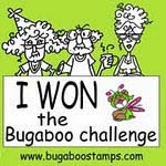 CATCH THE BUG CHALLENGE